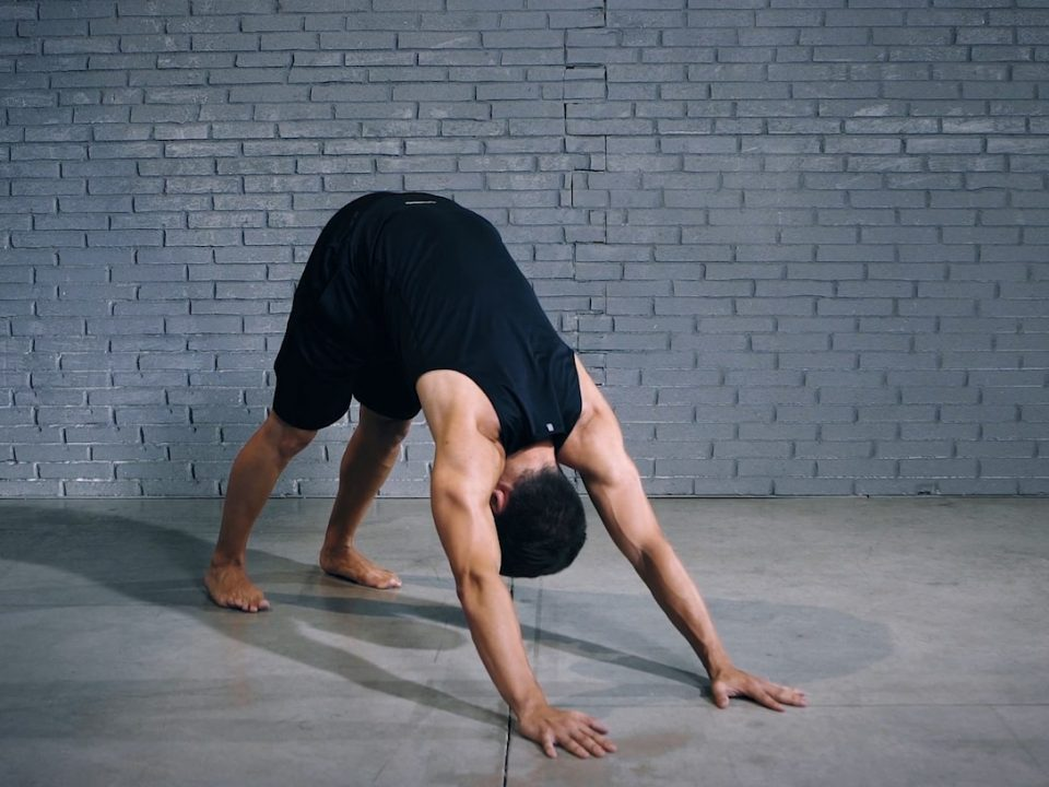 Tutorial: Front Support to Downward Dog